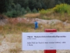 2013-bow-camp-bsv-hohe-heide-0136