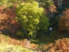 2012-schottland-auslandsjagd-159