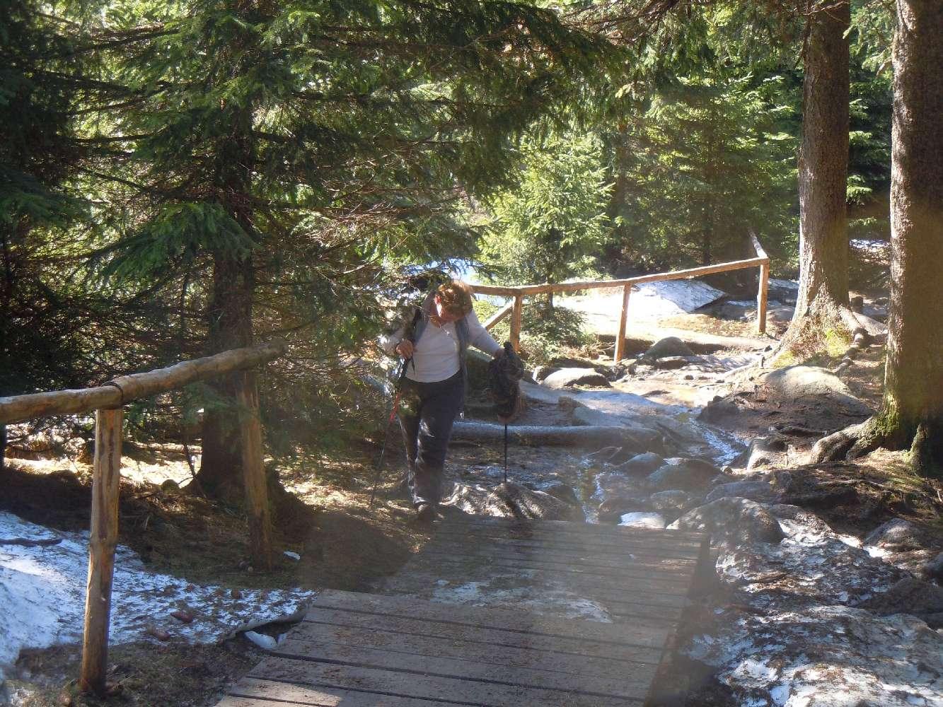 Hiking am Brocken