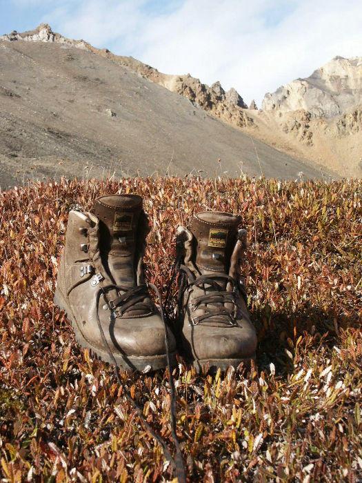 Echt zwiegenähte Wanderschuhe: Ortler, Perfekt und Super