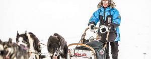 Erlebnisbericht vom Hundeschlittenrennen in Lappland powered by Fjäll Räven